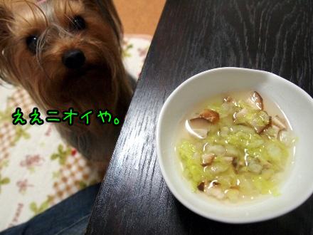4_20091119190502.jpg