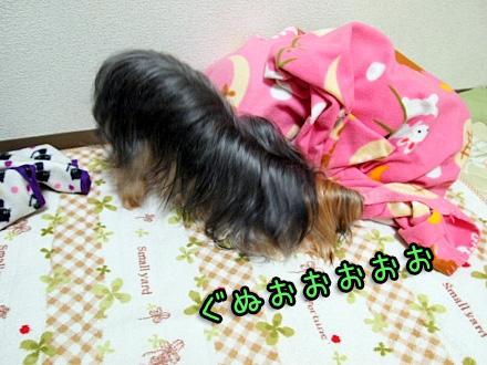 4_20091209190602.jpg