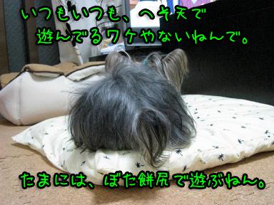 5_20090607144104.jpg
