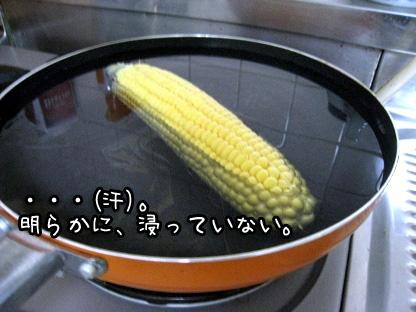 5_20090712160315.jpg
