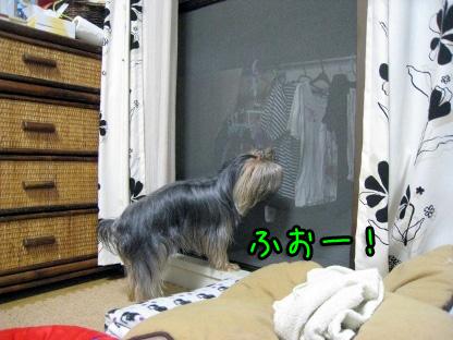 5_20090718205809.jpg