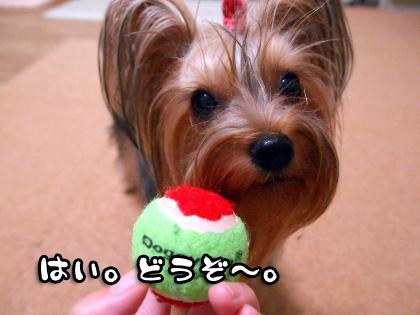 5_20090915193538.jpg