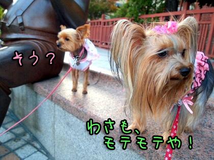 5_20091022195907.jpg