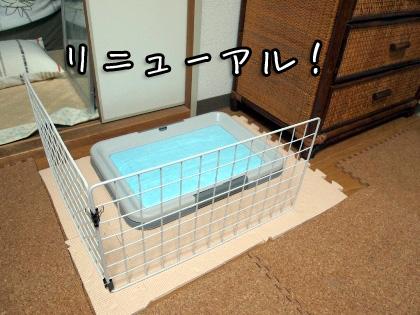 5_20091028192734.jpg