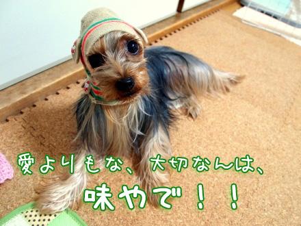 5_20091210200146.jpg