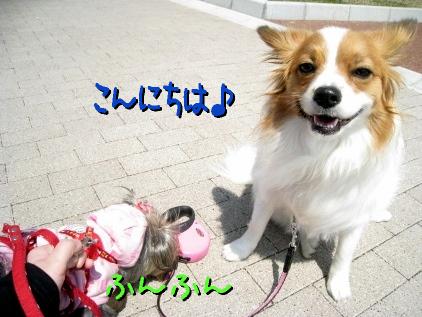 6_20090408154721.jpg