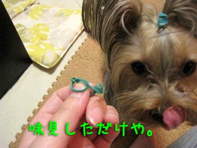 6_20090530210304.jpg