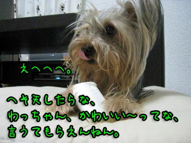 6_20090607144104.jpg