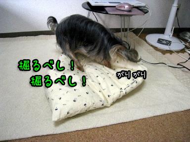 6_20090703193507.jpg