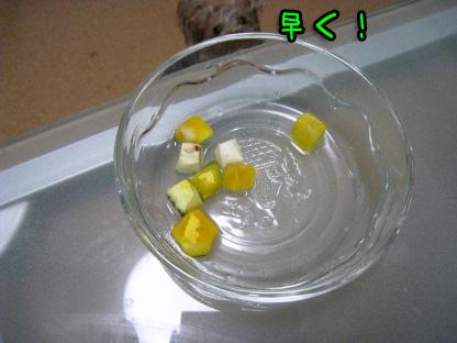 6_20090721195251.jpg