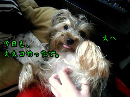 6_20090723161318.jpg
