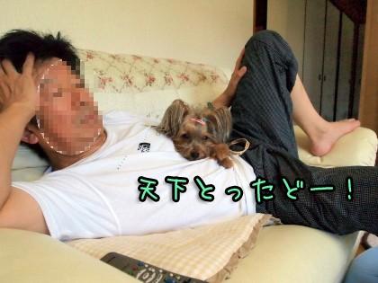 6_20090812205206.jpg