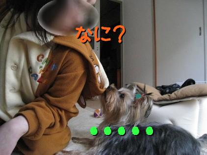 7_20090315155009.jpg
