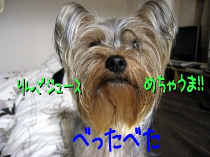 7_20090424182339.jpg