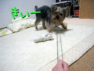 7_20090513150211.jpg