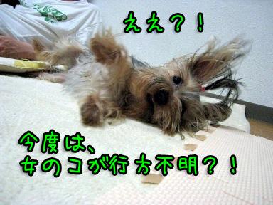 7_20090605202248.jpg