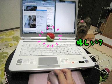 7_20090606191318.jpg