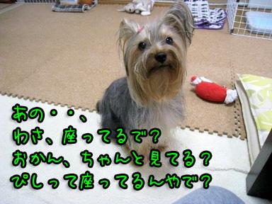 7_20090613183552.jpg