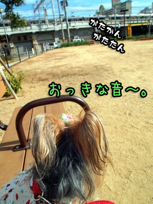 7_20090910172931.jpg