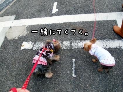 7_20091022195907.jpg
