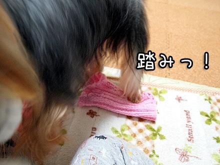 7_20091214174336.jpg