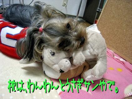 8_20090325145459.jpg