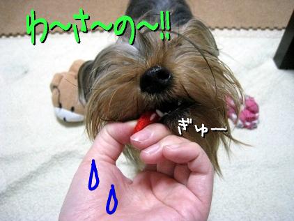 8_20090430190112.jpg