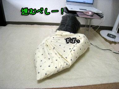 8_20090703193526.jpg