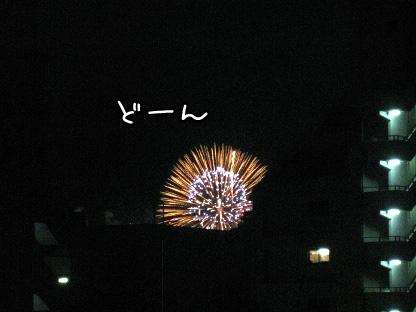 8_20090801204320.jpg
