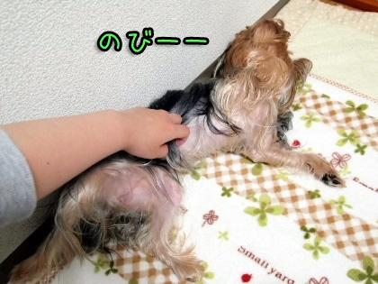 8_20090930180546.jpg