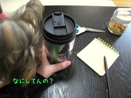 9_20090221152926.jpg