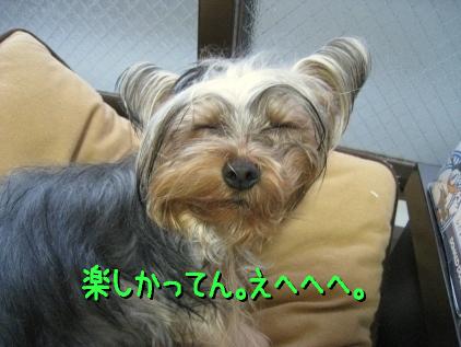 9_20090310185831.jpg