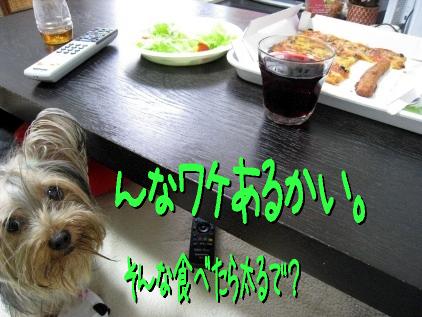 9_20090510182823.jpg