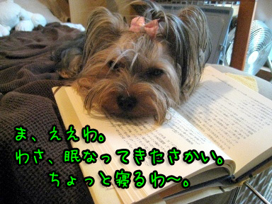 9_20090625202604.jpg