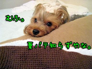 9_20090702194724.jpg