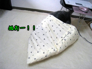 9_20090703193526.jpg
