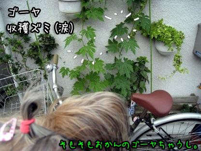 9_20090711190616.jpg