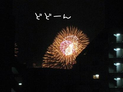 9_20090801204320.jpg