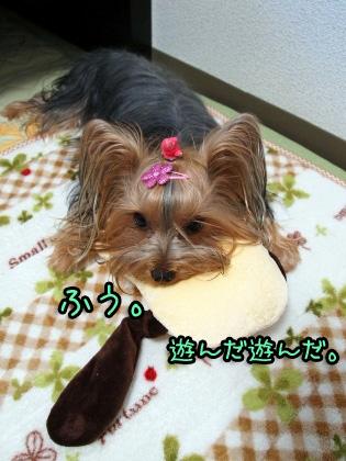 9_20091016195237.jpg