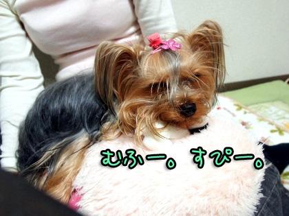 9_20091024192441.jpg
