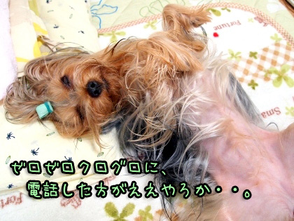 9_20091027193718.jpg