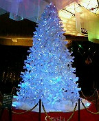 クリスマスツリー in クリスタ