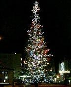 クリスマスツリー in 兵庫県芸術文化センター