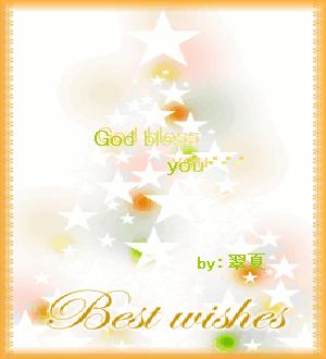 2006 クリスマスカード