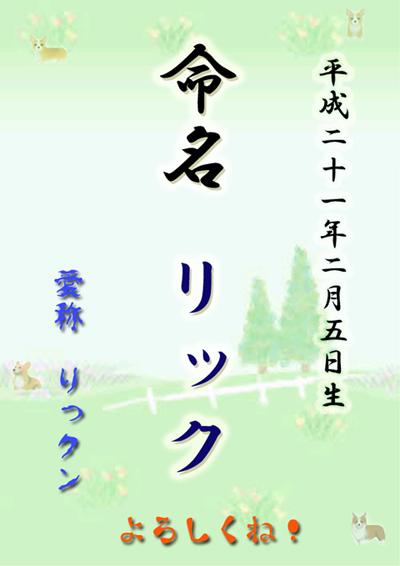 meimei-rick-3.jpg