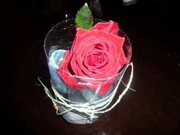 薔薇120本 015