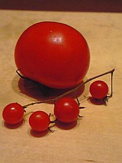 トマト2~02
