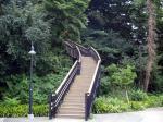 港の見える丘公園-せみ時雨