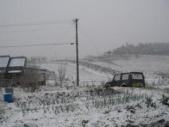 20080209畑2