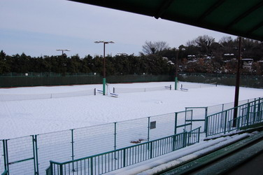 20080210テニス1